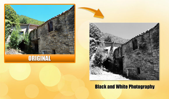 and turn your photos into black and white quickly - Turn Black And White Photo Into Color