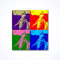 Andy Warhol pop art effect