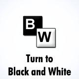 Black and White (B/W)